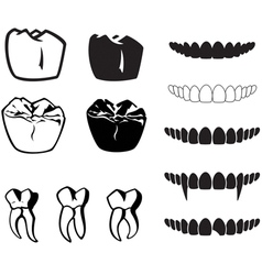 Teeth vector
