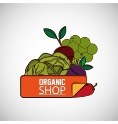 Organic shop design vector