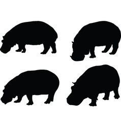 hippo collection - vector image vector image