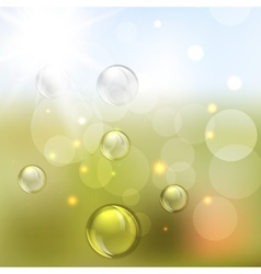 Summer abstract background with Lights vector image