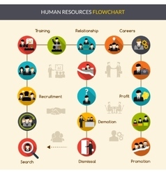 Human Resources Flowchart vector image