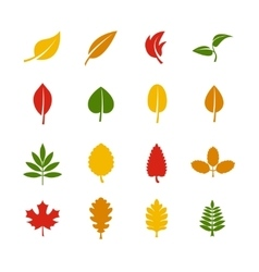 Leaf color icons vector image vector image