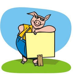 pig with sign vector image vector image