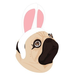 Lady dog rabbit on white background vector