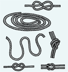 Nautical rope knots vector image