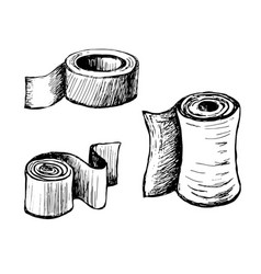 toilet paper and towels vector image vector image