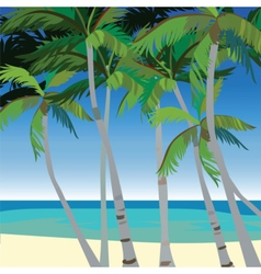 Tropic beach with palm trees vector