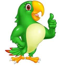 Cartoon parrot giving thumb up vector image