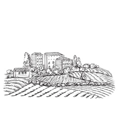 Village landscape with field and house vector