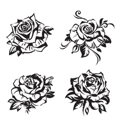 black rose set vector image vector image