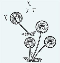 Dandelion on a wind vector image