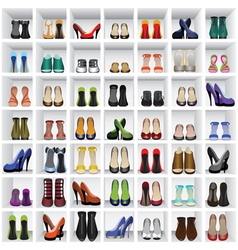Shoes on shelves vector