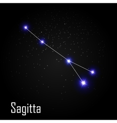 Sagitta constellation with beautiful bright stars vector