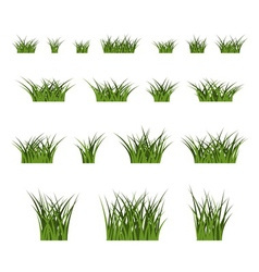 Green grass bushes set nature vector