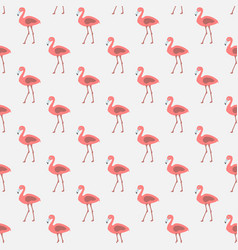 Seamless pattern with pink flamingos vector