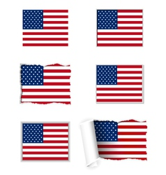 USA flag set vector image