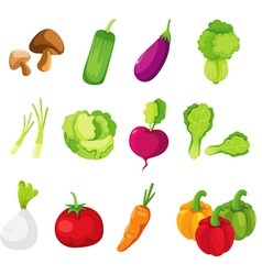 Collection vegetables vector image vector image