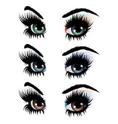 Evening eye make up vector