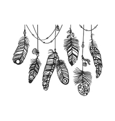 Pattern with decorative feather vector