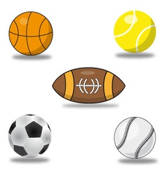 set of sport balls vector image