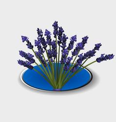 Lavender bunch over metallic border vector