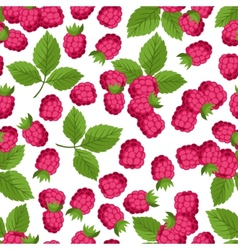 Seamless nature pattern with raspberries vector