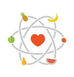 Fruits scheme vector image