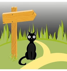 Black cat and wooden arrow on the road vector image vector image