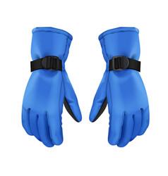 Blue winter gloves vector