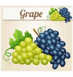 White and blue grape bunches Cartoon icon vector image vector image