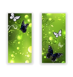 Two Green Banners with Butterflies vector image
