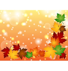 Maple leaves border with light effects vector