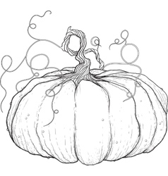 Big pumpkin with tail vector