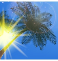 Blue sky with summer sun burst background vector
