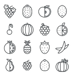 Line art fruit icons set flat design isolated vector image