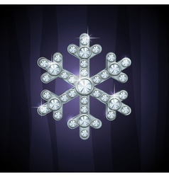 Jewel snow silver vector