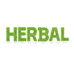 Herbal word made of green leafs vector