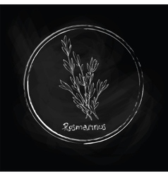 Dark rosemary vector