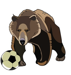 Cartoon brown bear with soccer ball vector
