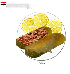Dolma or Iraqi Stuffed Meat in Grape Leaves vector image