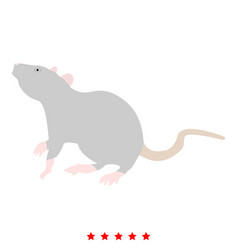 Rat icon color fill style vector