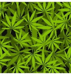 Marijuana leaves seamless pattern vector