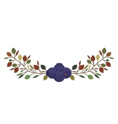 Contour with purple blueberries branch vector