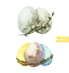 Watercolor egg set easter vector
