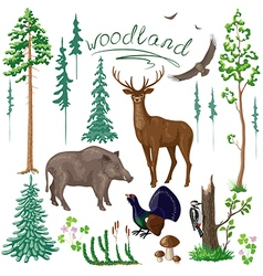 Woodland set in color vector