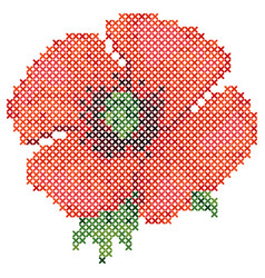 cross stitch red poppy vector image