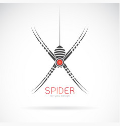 spider design on white background insect animal vector image