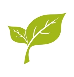Leaf plant green nature ecology icon vector