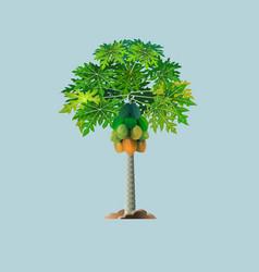 Pepaya tree vector