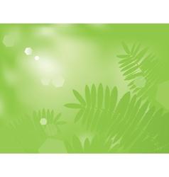 Green fern vector